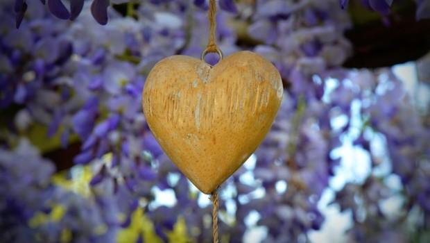 heart-337263_640