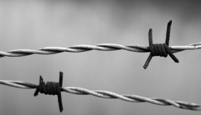 barbed-wire-1269430_960_720