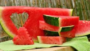 melon-1537284_960_720